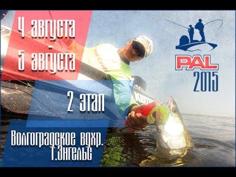 пал чемпионат прямая трансляция рыбалка