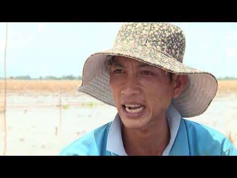 Tác phẩm đoạt giải Khuyến khích: Vùng biên mùa nước về 4
