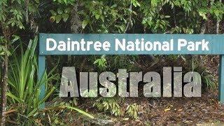 Daintree Australia  city photos : Australia, Daintree Rainforest ( HD )