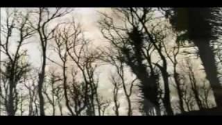 PANEN band - Pencarianku