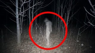 Video 5 Scary Things Caught on Camera In the Woods MP3, 3GP, MP4, WEBM, AVI, FLV Juli 2018