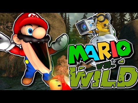 The Mario Channel: Mario Vs Wild