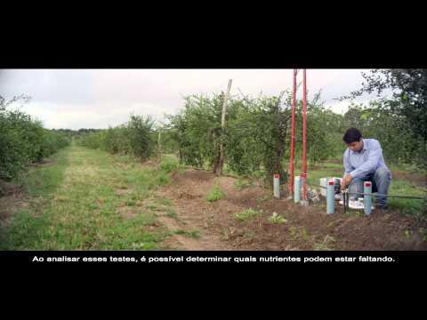 Nutrilite: A vida no solo - Fazenda Amway Nutrilite Trout Lake