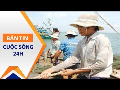 Formosa 'giúp' Việt Nam đẩy mạnh xuất khẩu lao động | VTC1 - Thời lượng: 81 giây.
