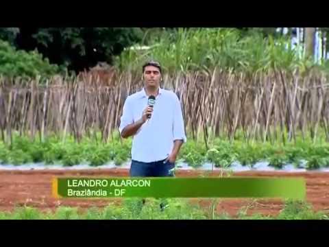 Vídeo Programa Mais Alimentos financia máquinas e equipamentos para agricultores