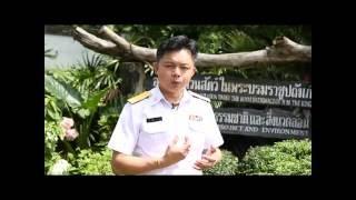 Nonton Elephant Kingdom Edit Film Subtitle Indonesia Streaming Movie Download