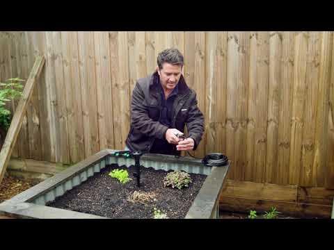 Irrigation Veggie Demonstration | The Home Team S5 E19
