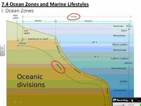 an analysis of the ocean zones A methodology for ocean outfall mixing zone analysis is presented it is based on a combination of four deterministic models for predicting hydrodynamic mixing behaviors of the discharged.