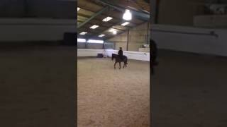 Hilary & Rocky - The Dreaded Dressage!