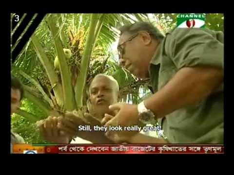 Mobile hatchery and PCR tested shrimp seeds bringing change in Bangladesh