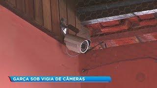 Mais de 300 câmeras de segurança são instaladas em prédios públicos de Garça