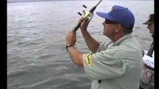 Garoupas Com Iscas Artificiais De Fundo Em Joinville - SC - Parte - 3