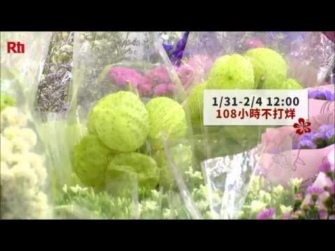 Neujahrsblumenmarkt in Taipei mit Blumennkunst-Experte ...