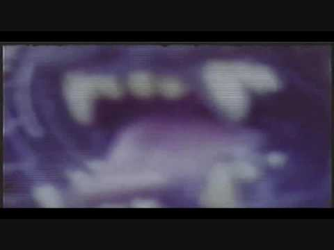 Gables Film Part 3 of 4 caught on video bigfoot video