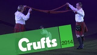 Heelwork To Music | Mary And Richard | Crufts 2014
