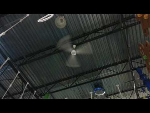 56 canarm industrial ceiling fans at an indoor playground canarm 56 ceiling fan