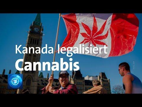 Cannabis in Kanada - Anbau, Verkauf und Konsum legalisiert