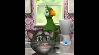 image of Papagaio do Jony com Eu quero tchu eu quero tcha