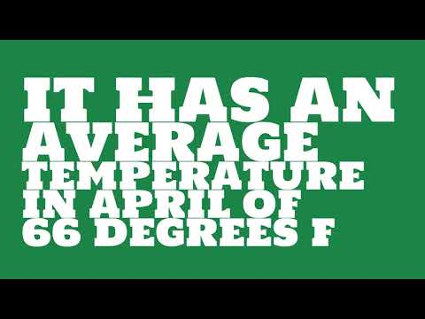 What is the average annual precipitation of Las Vegas?