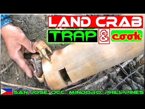 """EP124-Part1 - Traditional Bamboo Trap called """"Salading"""" for Land Crab   Occ. Mindoro"""