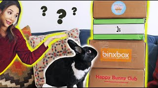 COMPARING ALL THE BUNNY SUBSCRIPTION BOXES! 😱 by Lennon The Bunny