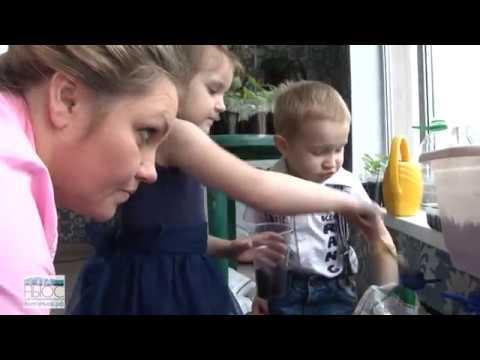 Бизнес-леди с пятью детьми осталась без работы и без мужа