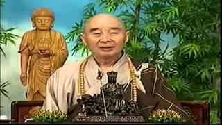 Kinh Vô Luợng Thọ (1998) tập 91&92  - Pháp sư Tịnh Không