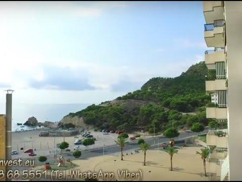 Квартира в Испании, город Бенидорм, первая линия моря, односпальные апартаменты на Ла Кала