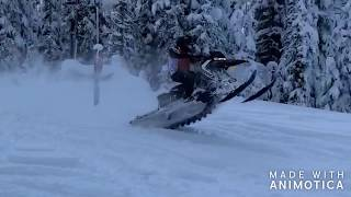 9. The 509 Boyz free riding on HWY 20 Arctic Cat Alpha 1 hits some trees