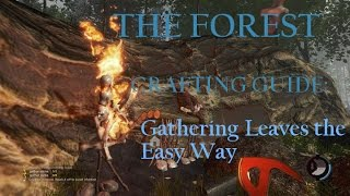 The Forest (Survival Horror Sandbox Crafting PC Game) Tutorial Crafting Guide: How To Gather Leaves