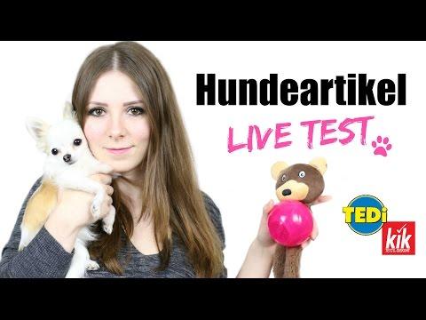 KIK & TEDI MINI HUNDE HAUL + LIVE TEST #2 🐶⚾️