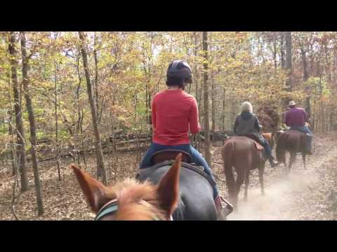 Riding At Wrangler Horse Camp - The Land Between The Lakes