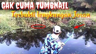 Video Mancing Ikan Gabus di Parit Eceng Gondok MP3, 3GP, MP4, WEBM, AVI, FLV Juli 2019