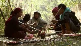 What If We Change - Documentary On Ecosystem Restoration
