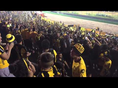 La banda siempre va a estar / Peñarol vs Defensor - Barra Amsterdam - Peñarol