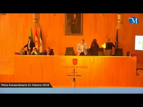 Pleno extraordinario de la Diputación de Málaga