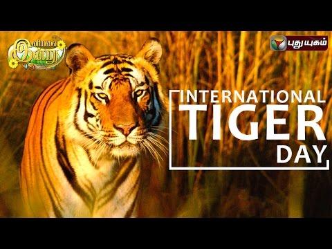 International-Tiger-Day-in-Iniyavai-Indru--29-07-2016-I-Puthuyugam-TV