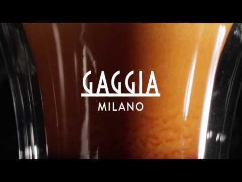 The Gaggia Platinum Vision : Luxury & Style