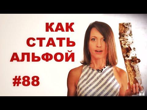 Как стать альфой (если тебе это надо) // Всё как у зверей 88 - DomaVideo.Ru