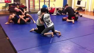 Beginners BJJ / MMA