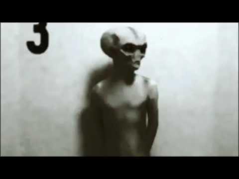 Real Alien Caught On Tape 2012