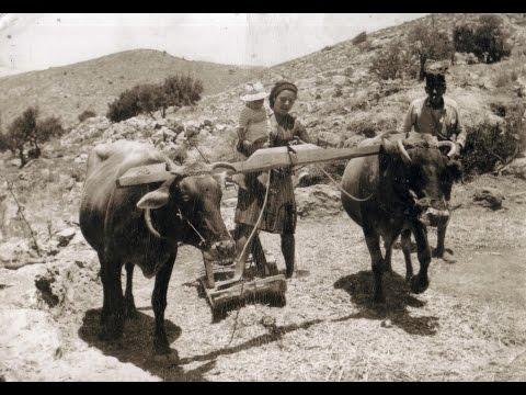 Το παραδοσιακό αλώνισμα στην Κρήτη σε ένα μοναδικό βίντεο εποχής