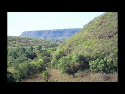 Palmeira do Piauí