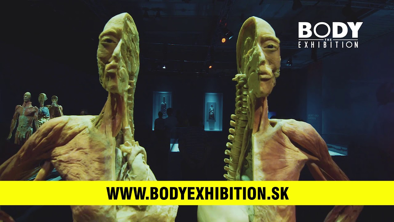 Bodies Exhibition