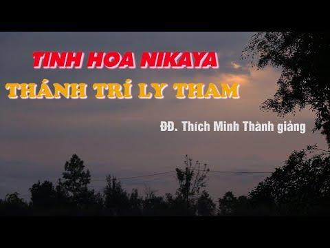 Tinh Hoa NIKAYA - Thánh Trí Ly Tham
