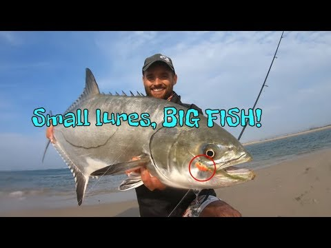 Catching BIG Garrick using light tackle and Artificial lures!