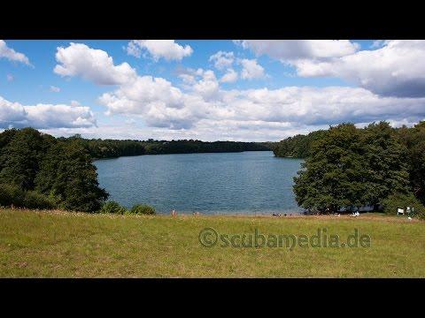 Tauchen in der Feldberger Seenlandschaft - Dreetzsee, Carwitzer See, Schmaler Luzin