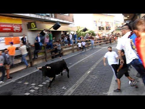 Encierro Moralzarzal 2017, Domingo 24