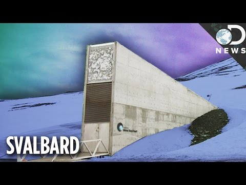 A Rare Look Inside The Doomsday Seed Vault Deep In The Arctic