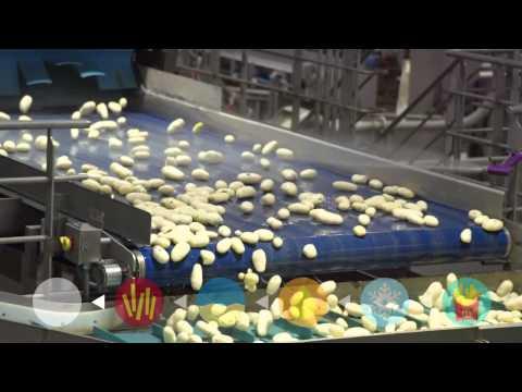 麥當勞薯條的成分與製作過程大公開!怪不得要少吃